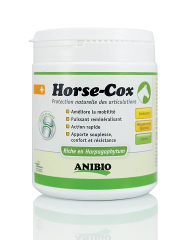 Horse-Cox Articulations du Cheval