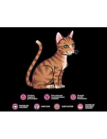 Logo KittyRade chat