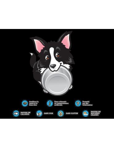 Logo DoggyRade chien