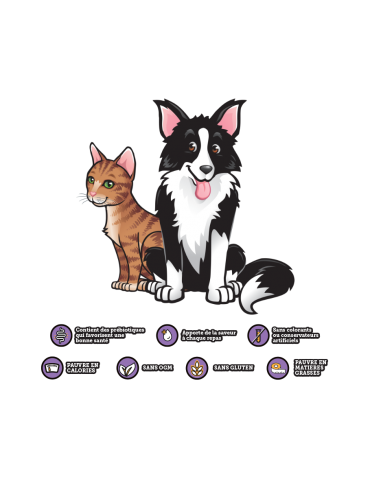 Logo YummyRade chien et chat