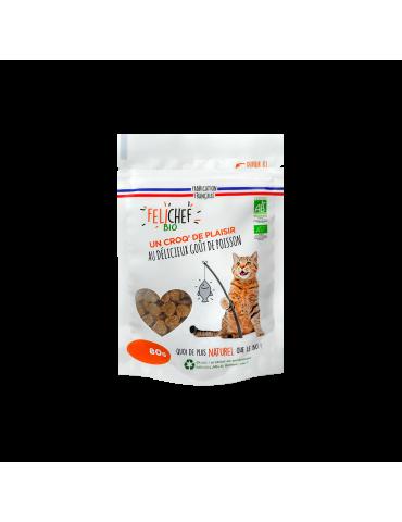 Sachat de friandises Bio pour Chat au goût de Poisson