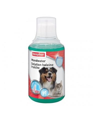 Solution haleine fraîche chien et chat