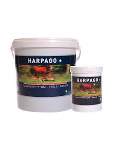 Harpago + Soutien des...