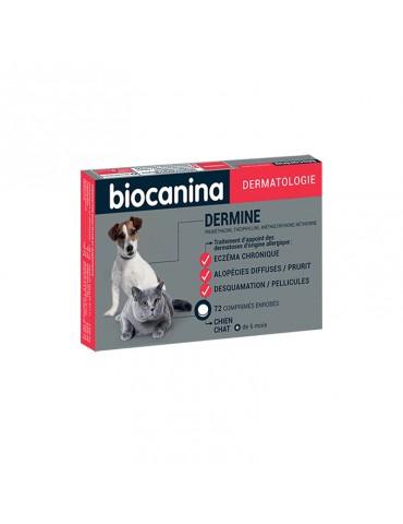 Dermine Pour Eczema...