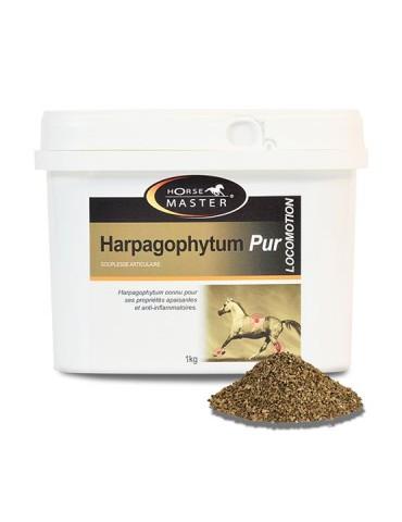 Harpagophytum Pur...