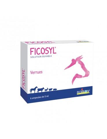 Ficosyl Boiron