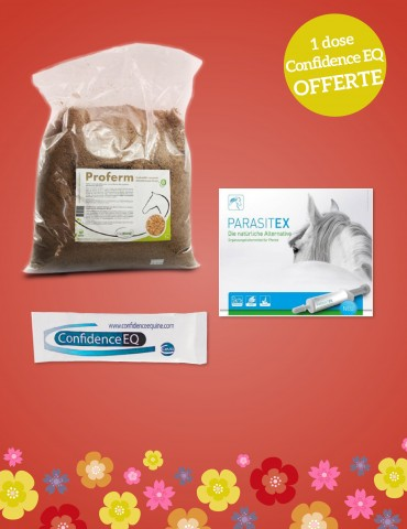 Pack de Printemps Cheval N°2