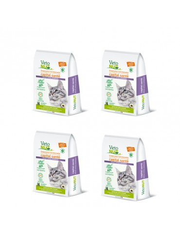 VetoNut Chat Special Digestion Hypoallergénique Lot de 4