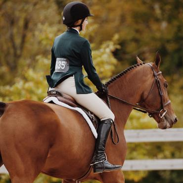 cheval et sa cavalière
