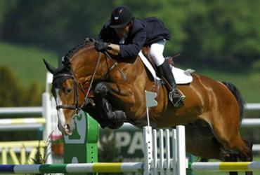 La nébulisation pour chevaux
